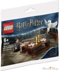 LEGO Harry Potter és Hedwig 30420