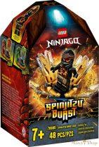 LEGO Ninjago - Spinjitzu Villanás - Cole 70685